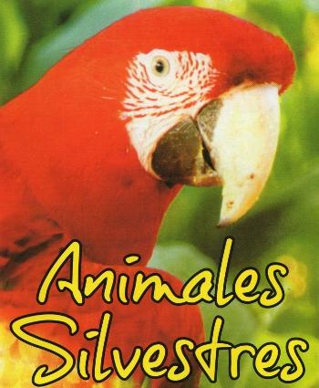 Animales Silvestres en Paraná - La Web de Paraná
